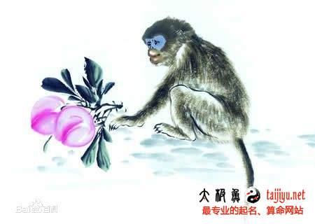 2016申猴李姓猴宝宝起名字大全