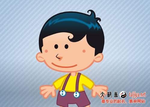 猪年男宝宝起名常用字大全(带解释)