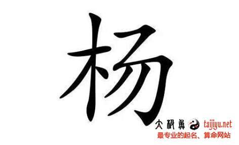 2019猪年好听的杨姓男宝宝起名名字大全