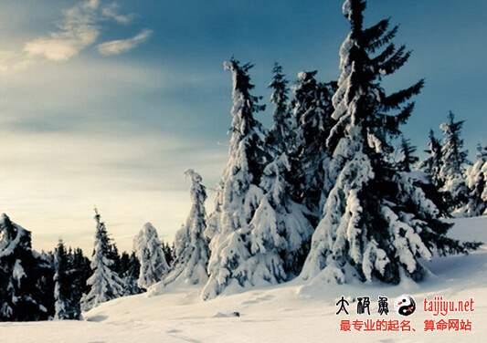梦见大雪的解释