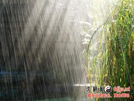 梦见下雨雷雨的意思