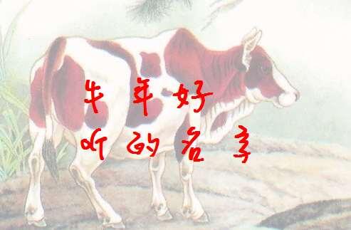 属牛曾姓宝宝起名大全